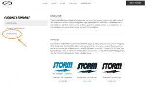 ストームサイトロゴ
