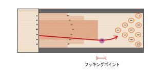 ボールの動き2